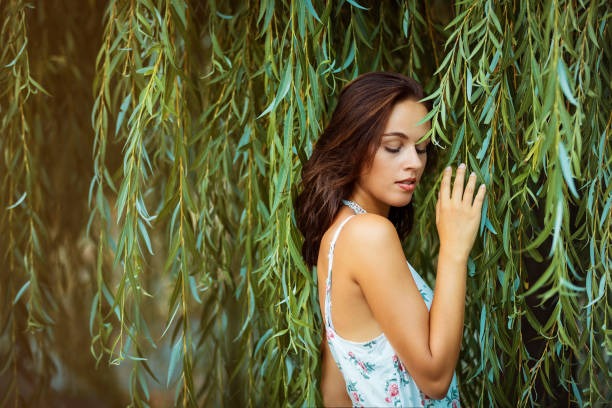 young brunette woman portrait in front of a willow tree stock photo
