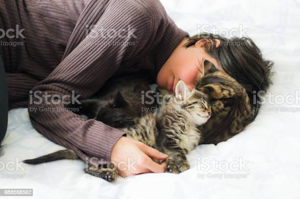 Young brunette woman resting with three cute kittens on the bed picture id688568562?b=1&k=6&m=688568562&s=612x612&h=fqkp5y36lfmctp9cutk0hyhmbx8juuivtlwumo7ghfy=