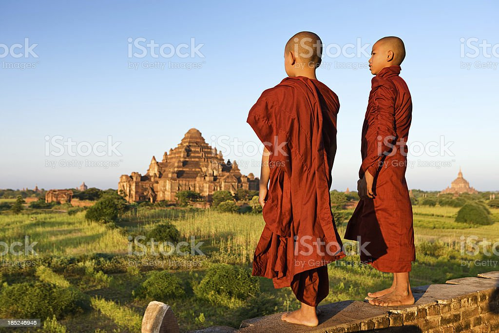 Young Buddhist monk stock photo
