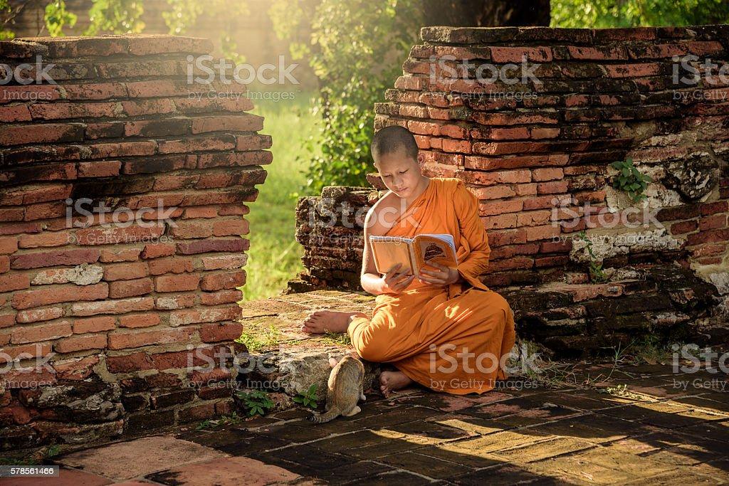 Young Buddhist novice monk stock photo