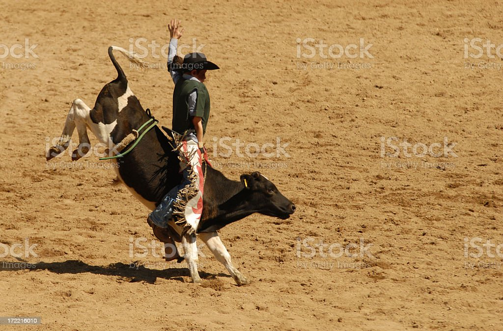 young bullrider stock photo