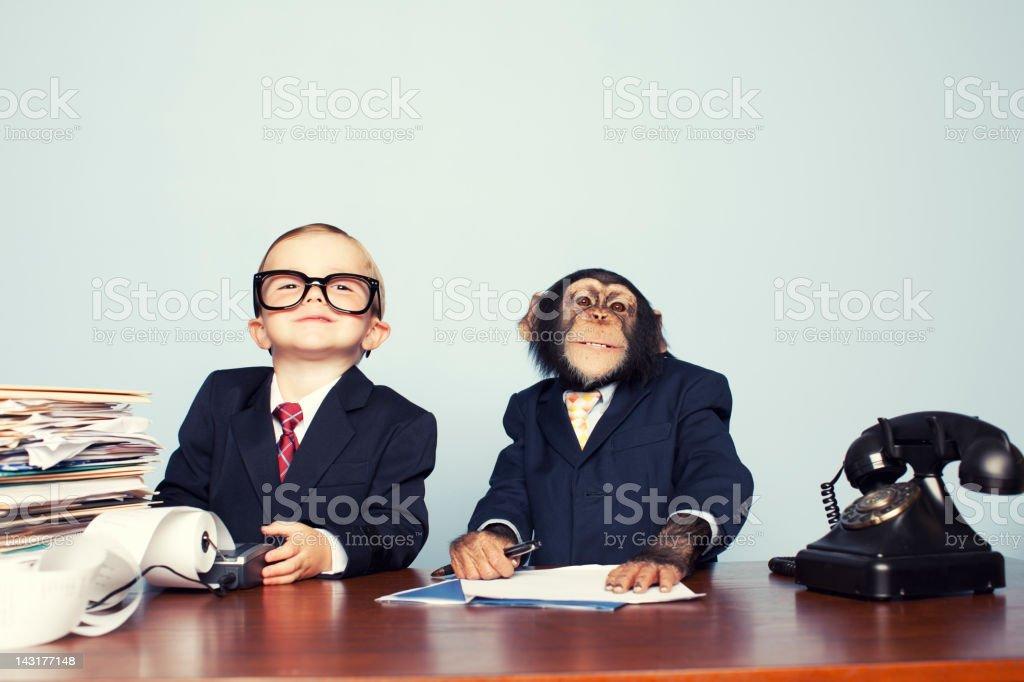 Junge Business-Team – Foto