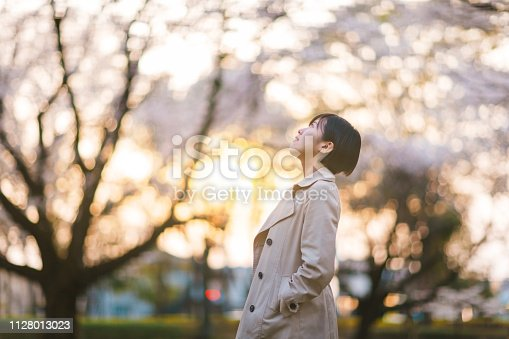 A portrait of a young businesswoman in public park under sakura trees during sunset