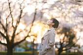 日没時に桜の木々 の下で公共の公園で若い実業家
