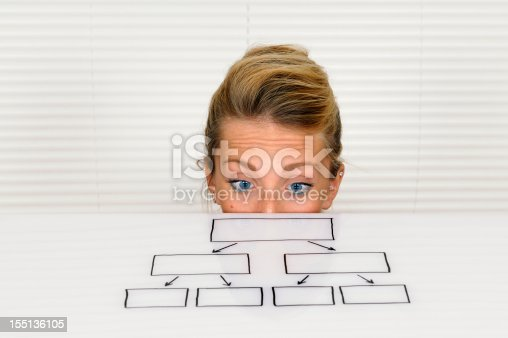 istock Young Businesswoman Looking at Organization Chart 155136105