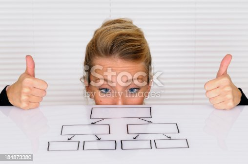istock Young Businesswoman Looking at Organization Chart 184873380