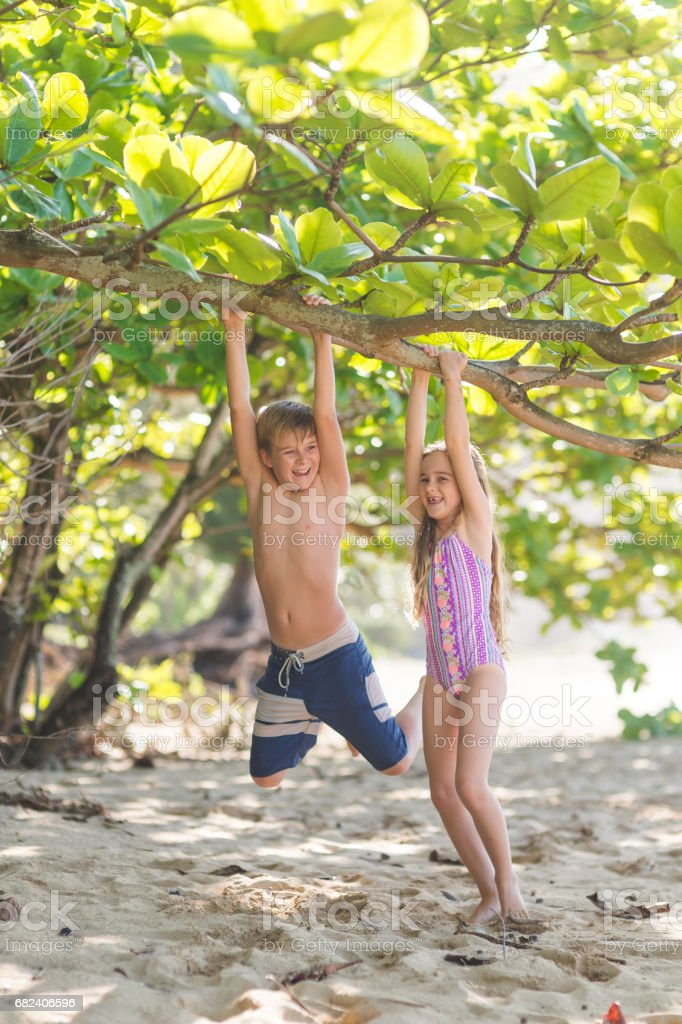 Young Caucasian boy hangs from tree limb on sandy Hawaii beach royalty-free stock photo