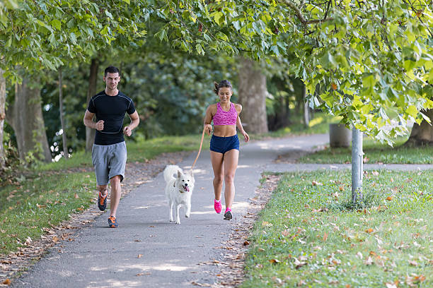 Young caucasian couple with dog running in park picture id622903256?b=1&k=6&m=622903256&s=612x612&w=0&h=zrqfq3yz4mg4niesx7ds6qi7s7rclhdm8gxftedhsgu=