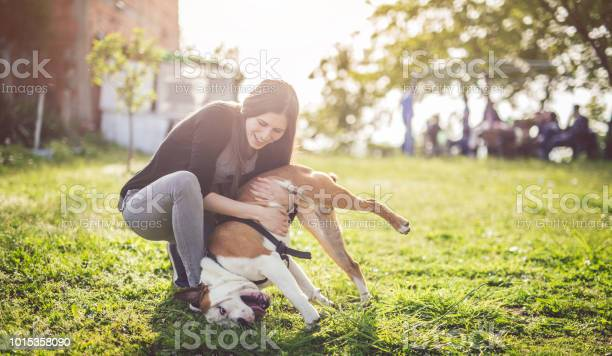 Young caucasian girl playing with dog picture id1015358090?b=1&k=6&m=1015358090&s=612x612&h=ufe67b8feyxtrvywvijlwzkjsl5uye2qih pxu8ukj4=