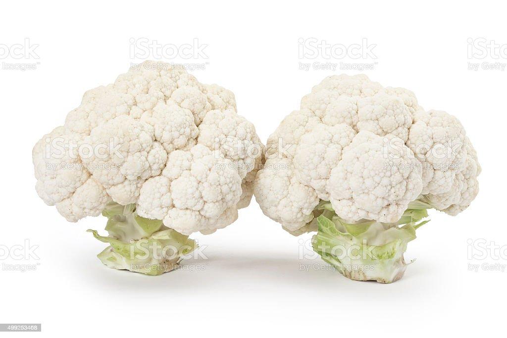 Young cauliflower stock photo