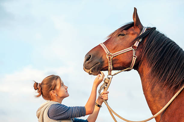 Young cheerful teenage girl stroking brown horse's nose. Outdoors image. stock photo
