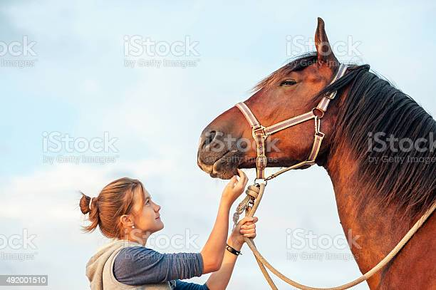 Photo of Young cheerful teenage girl stroking brown horse's nose. Outdoors image.