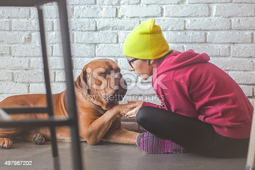 Young cheerful woman wearing eyeglasses and yellow hat sitting on the floor and playing with her dog - French Mastiff. Shoot with available, natural light. Copy space has been left.