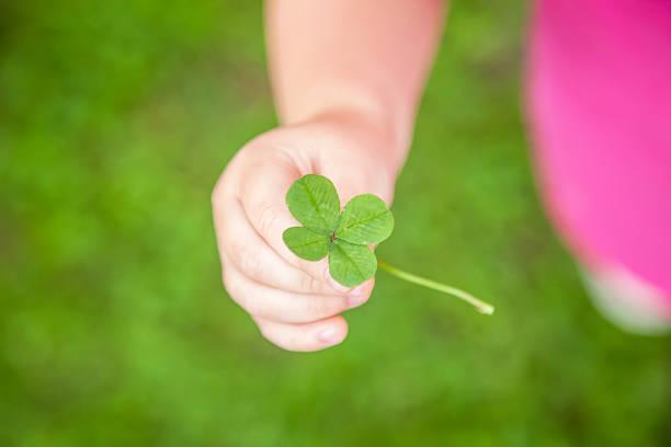 Jovem criança segurando a sorte do Trevo de Quatro Folhas - foto de acervo