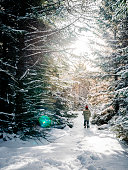 Child walking on a snowy day in a beautiful forest during daytime enjoying the outdoors