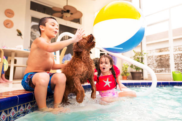 Young children and pet dog playing in the pool picture id1013734966?b=1&k=6&m=1013734966&s=612x612&w=0&h=ukrxzjifkgvzfuuxwq1hbxxs229hjydm8fyr38rfsiw=