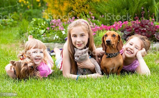 Young children and pet dogs picture id121202184?b=1&k=6&m=121202184&s=612x612&h=9q4sygjfsb hih mm8tpjs xqjhsharfmusw4d837fc=