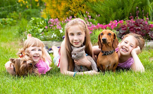 Young children and pet dogs picture id121202184?b=1&k=6&m=121202184&s=612x612&w=0&h=bk8qypfydyerronz8jsjdvivqord2h3k8c0xg58bipk=