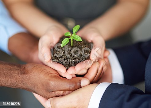 istock Young companies need nurturing 513949228
