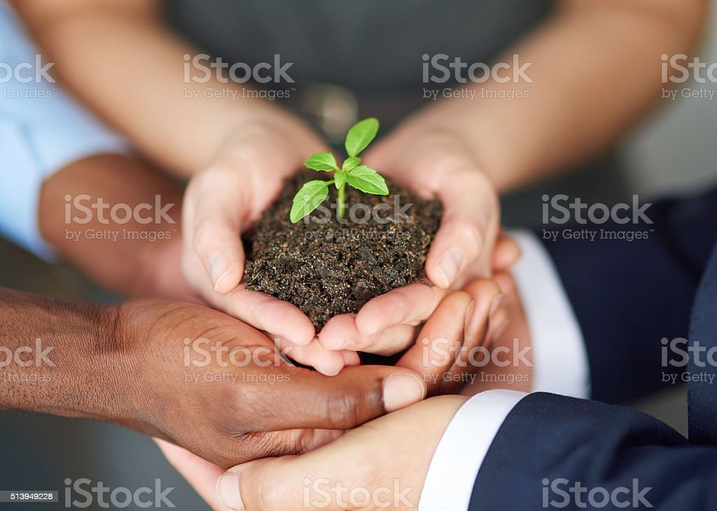 Young companies need nurturing stock photo