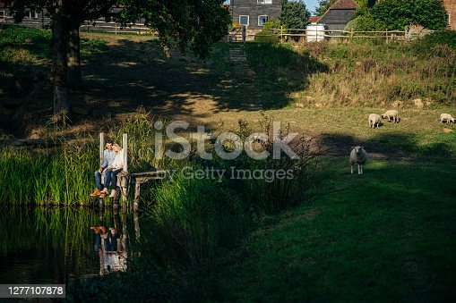 istock Young couple and grazing sheep in late afternoon rural scene 1277107878