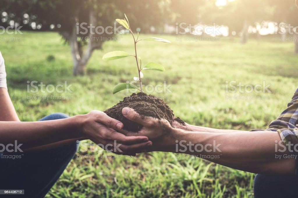 Jong koppel uitvoering een zaailingen worden uitgeplant in de grond in de tuin zoals opslaan wereld concept, natuur, milieu en ecologie - Royalty-free Activiteit Stockfoto