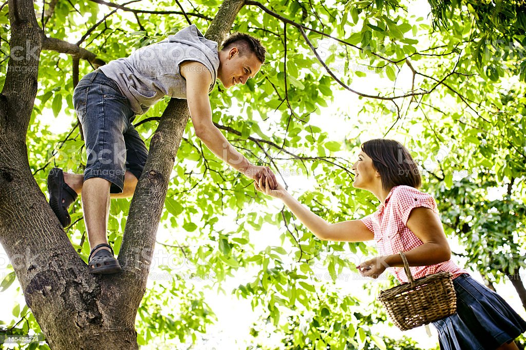 Young couple collectiing nuts royalty-free stock photo