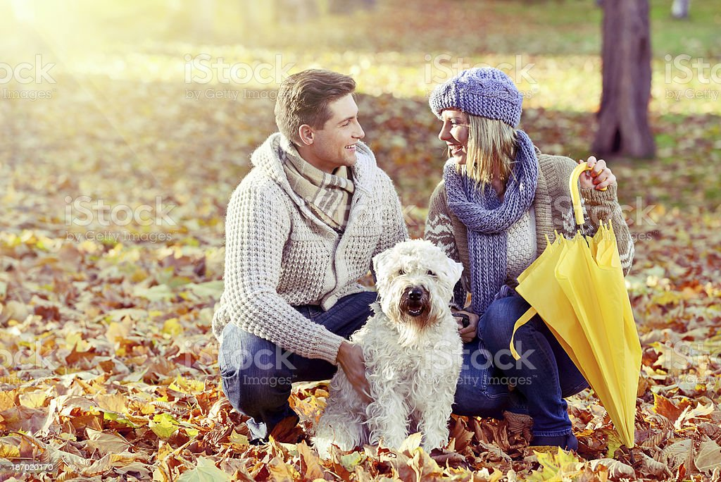 Young couple having an autumn walk with their dog royalty-free stock photo