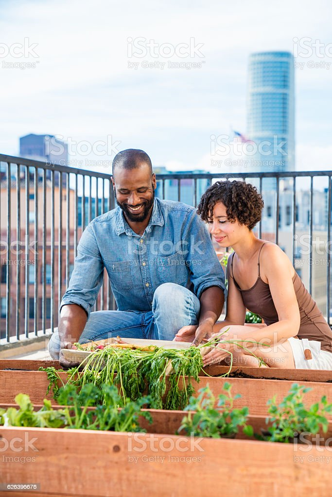 Young couple having fun gardening together stock photo