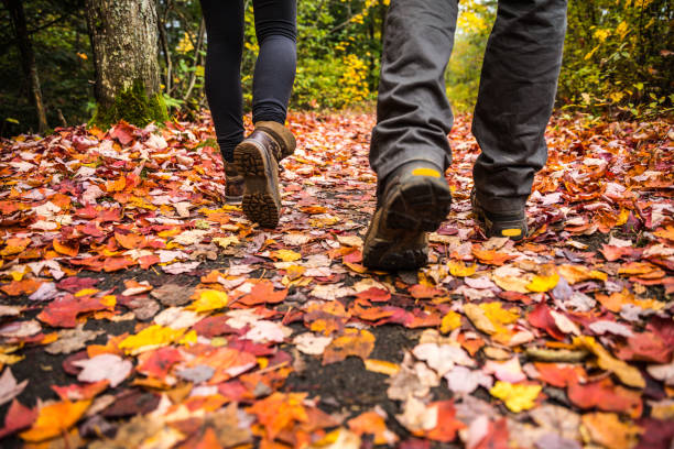 Young couple hiking in mountain on a footpath in Canada stock photo