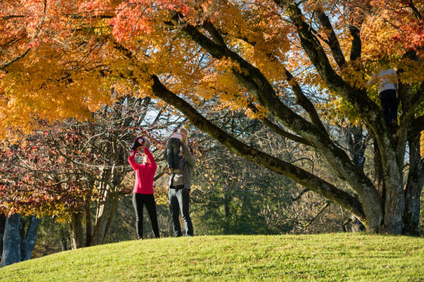 Young couple in autumn park playing with their kids stock photo