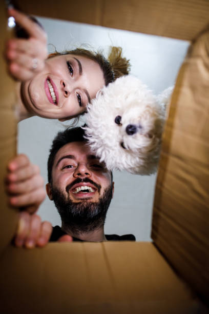 young couple looking into the box - being in a relationship with someone is going to require stock photos and pictures