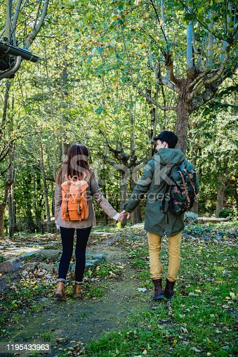 Rear view of a young couple of sightseers walking in the forest