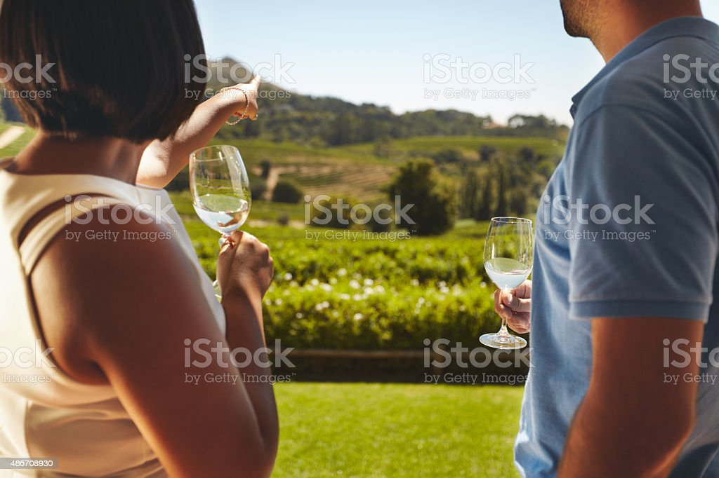 Young couple on vacation at vineyard stock photo