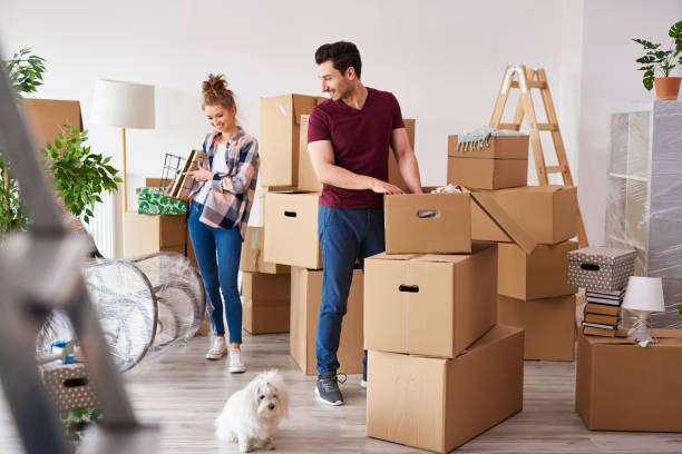 Young couple packing their stuff into boxes stock photo