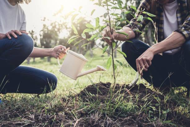 Jeune couple plantant l'arbre tout en arrosant un arbre travailler dans le jardin comme sauver l'écologie, nature, environnement et concept monde - Photo