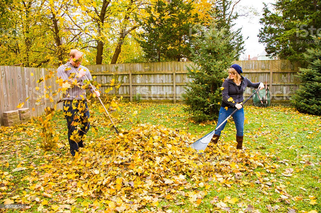 Young Couple Playing In Leaves While Raking The Yard stock photo