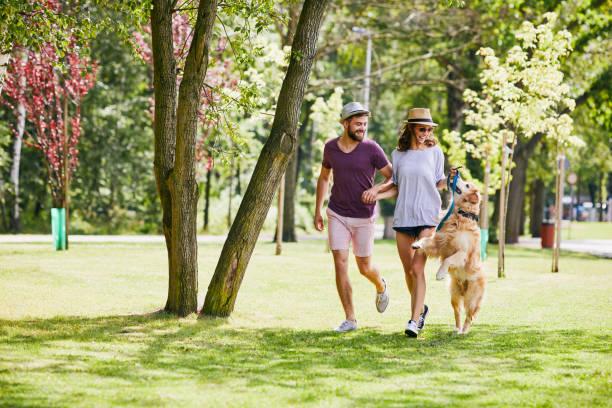 Young couple running and playing with their dog outdoors in the picture id1031859668?b=1&k=6&m=1031859668&s=612x612&w=0&h=psvmr fwjz5ykbou85djpiideetot4i7 3nzwhmoiha=
