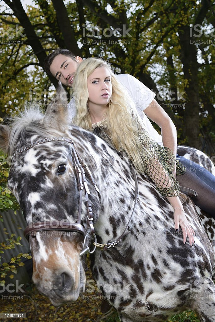 Young couple sitting on a horse royalty-free stock photo