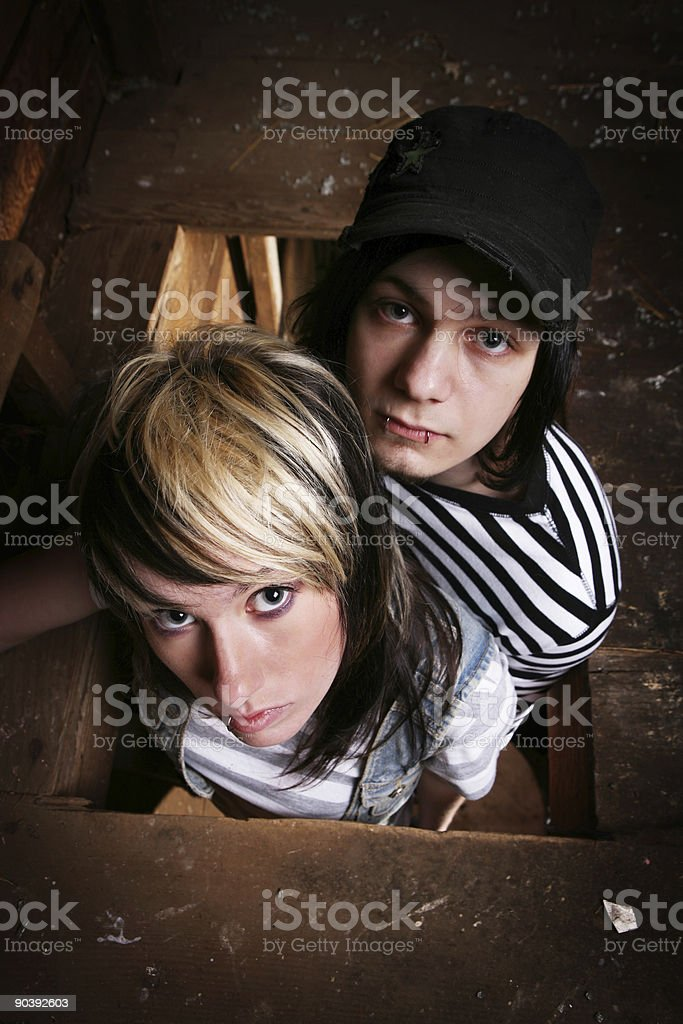 Young Couple Standing on a Barn Ladder royalty-free stock photo