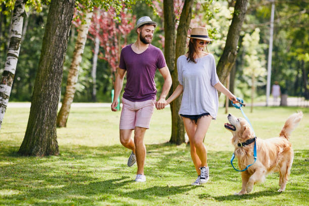 Young couple walking their dog together in the park during summer stock photo