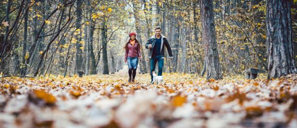 Junge Paare, die mit ihrem Hund in einem bunten Herbstwald – Foto