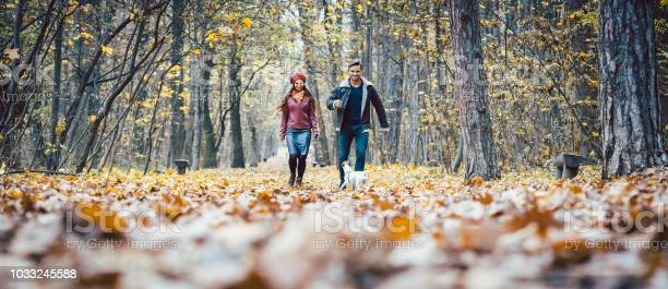 Photo of Young couple walking with their dog in a colorful autumn forest