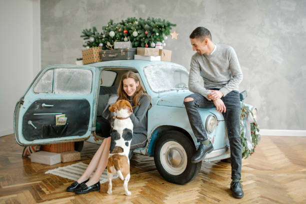 Young couple with beagle and retro car in christmas decorated studio stock photo