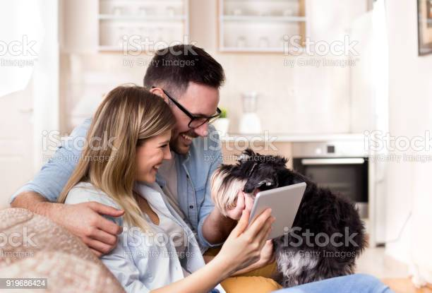 Young couple with dog on sofa looking at tablet picture id919686424?b=1&k=6&m=919686424&s=612x612&h=yshiv zmgtzxb0drq4bwp1dgzzeyklpphvfkuflxdvi=