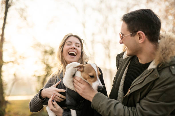 Young couple with their Jack Russell puppy stock photo