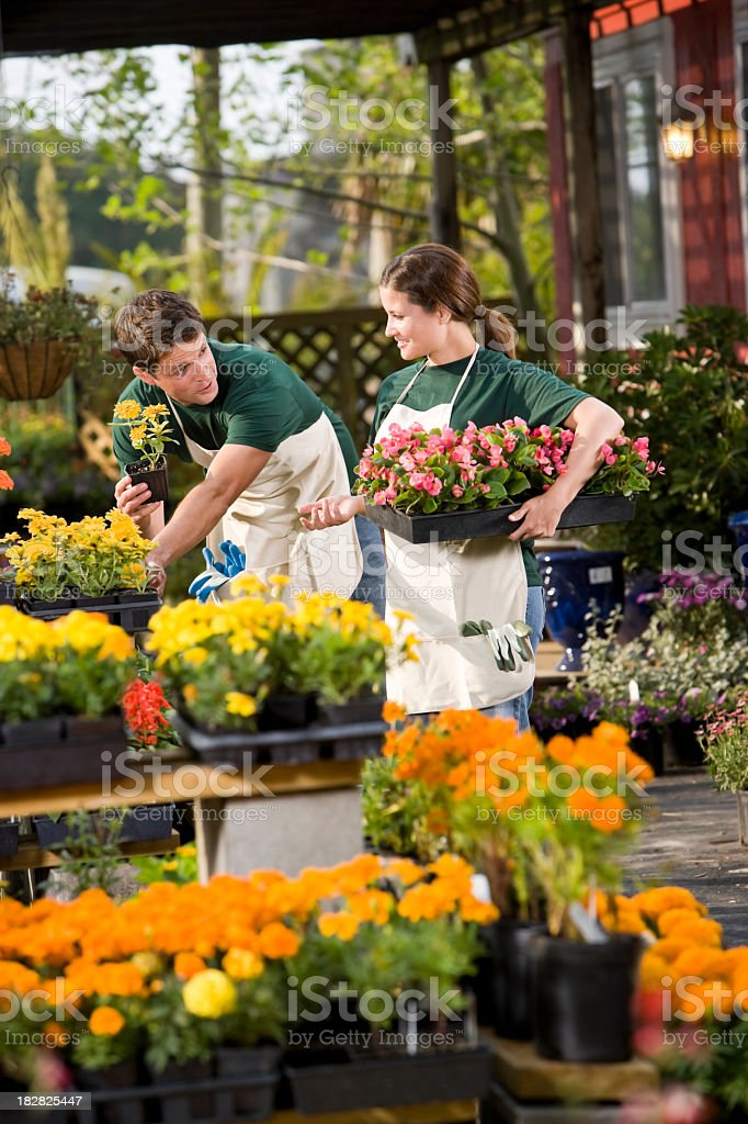 Young couple working in plant nursery royalty-free stock photo
