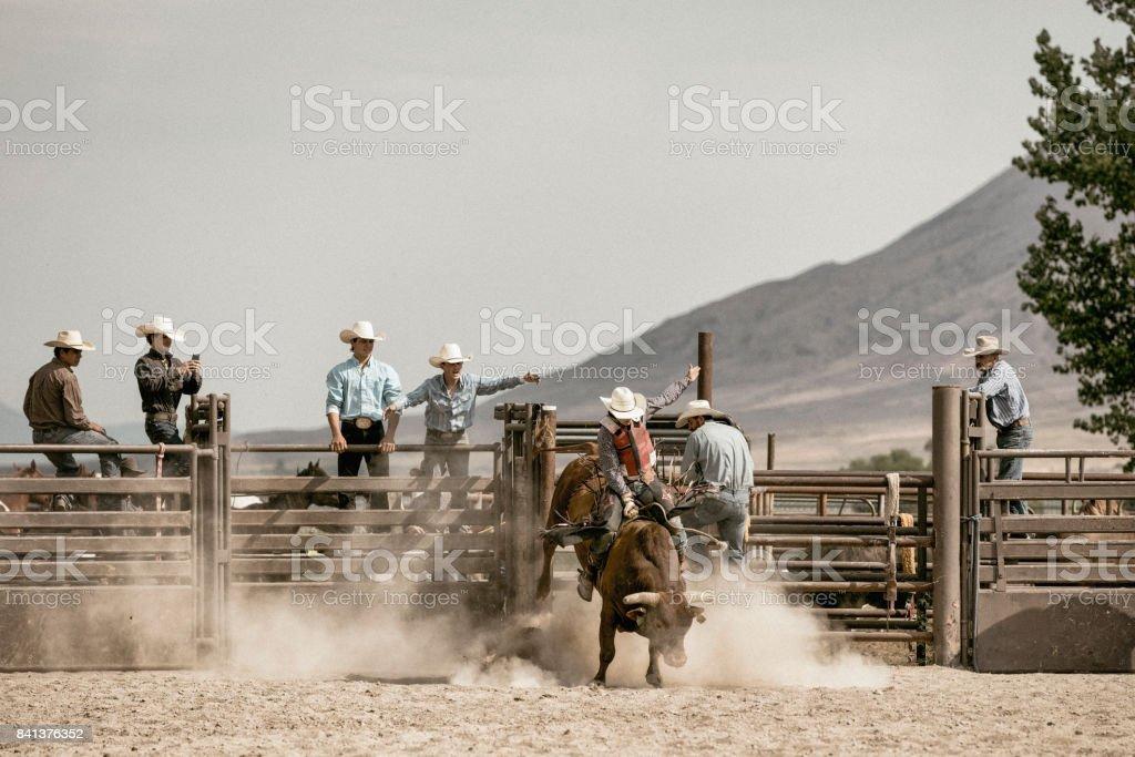 Un jeune cow-boy bareback riding sur un taureau tronçonnage tandis qu'un groupe de Cow-Boys montre lui en arrière-plan. - Photo