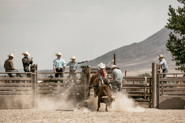 A young cowboy bareback riding on a bucking bull while a group of cowboys watch him in the background. stock photo