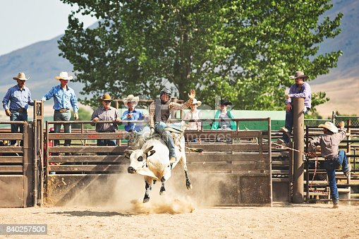 Young cowboy riding a bull at a summer rodeo.
